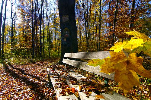 Bayern Herbsturlaub