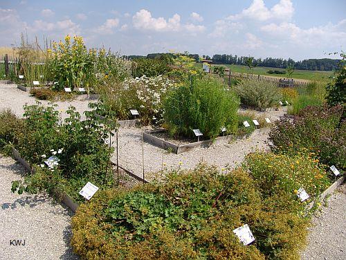 Andechser Kräutergarten - Foto Sommer