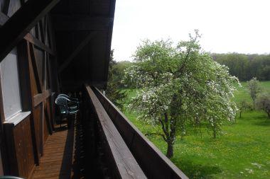 Ferienwohnung auf dem Triebhof in Diessen-Rieden
