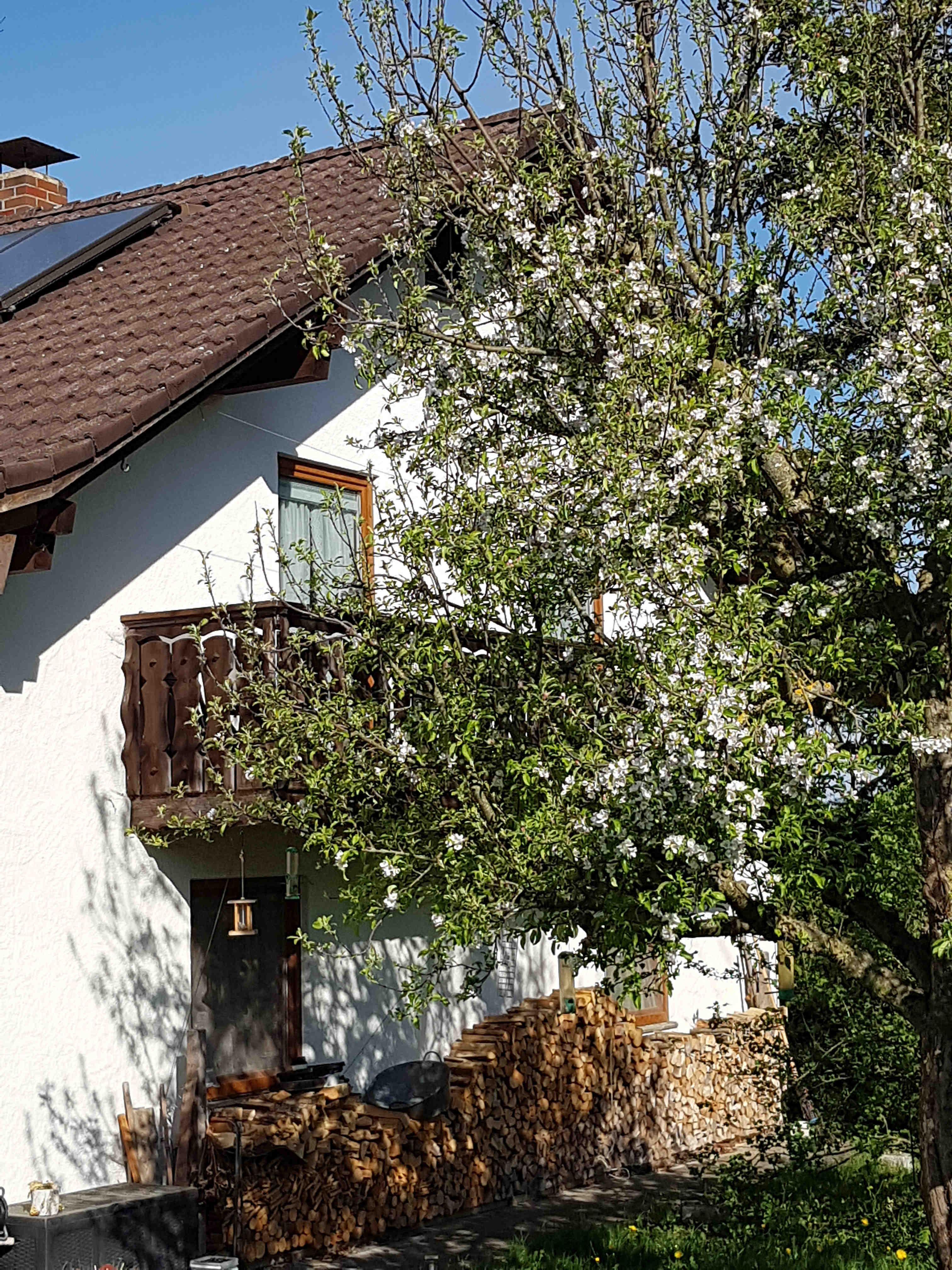 Apfeldorf: Bauernhof-Urlaub bei Familie Schreiegg