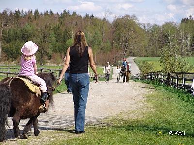 Pferd Reiten München Rund um Reiten Und Pferde