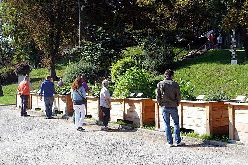 Andechser Kräutergarten