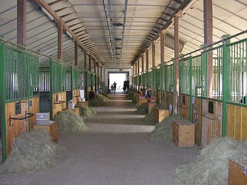 Pferde-Pension Boxen Scheuring